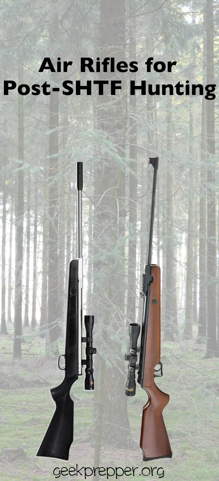 Air rifles are the perfect, stealthy solution for providing food for your family after SHTF. Make sure to keep a couple air rifles ready for the collapse. GeekPrepper.org