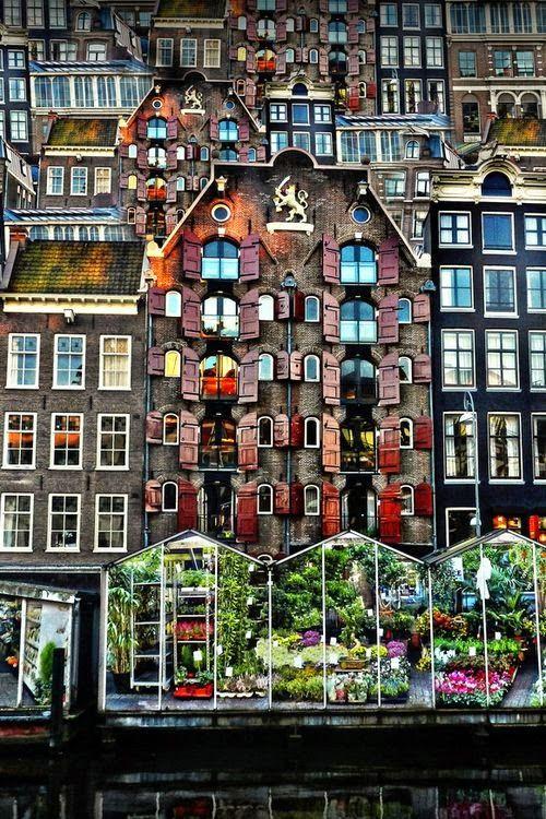 Mercado de Flor - Amsterdam  Países Bajos. Europa.