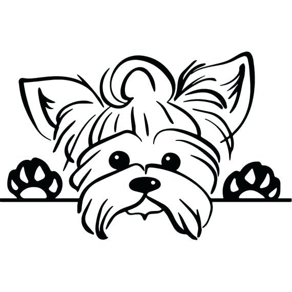 Yorkie Coloring Pages Best Coloring Pages For Kids Dog Tattoos Dog Coloring Page Yorkie Dogs