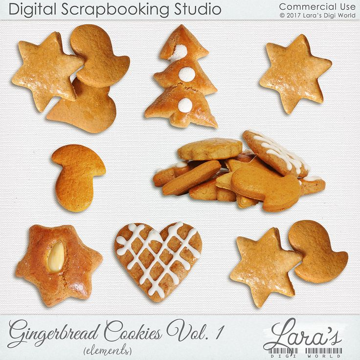 8 realistic gingerbread cookies great for all Christmas projects.