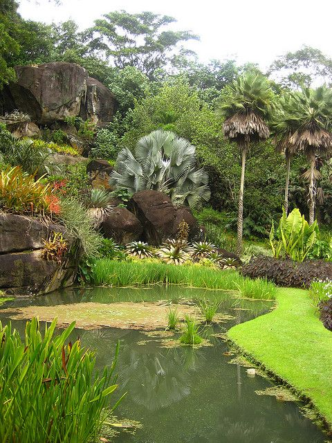 Sitio Roberto Burle-Marx by irisnevus, via Flickr