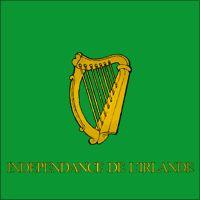 Bandiera del 3 rgt. straniero irlandese