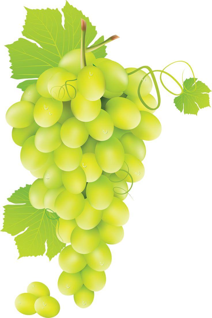 Green grape PNG image