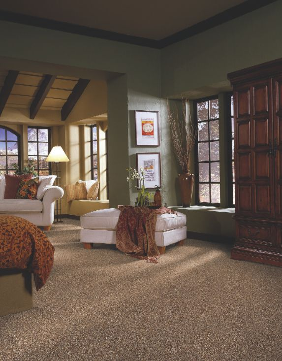 Receive up to off of select tigressa carpet styles for your home at ed selden carpet one