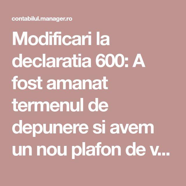 Modificari la declaratia 600: A fost amanat termenul de depunere si avem un nou plafon de venituri!