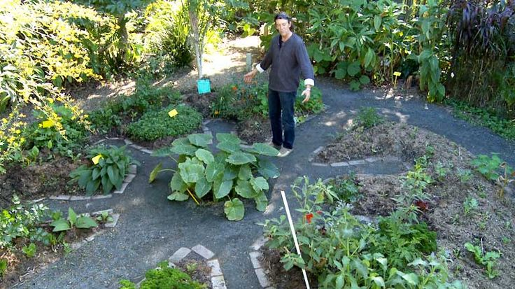 Backyard Permaculture Gardening Australia : keyhole garden mandala plan vegie garden design mandala garden intro