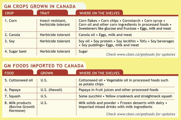Get a better understanding of #GMO foods in Canada and how to avoid them! Great tips from a great #organicweek National Leader sponsor @thebigcarrotnfm