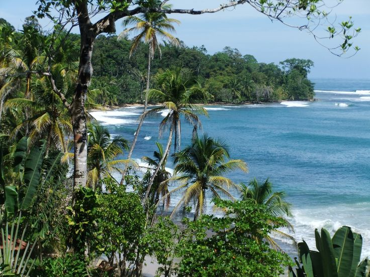 Today's Inspiration... Bocas del Toro, Panama From Nature's vibrant Palette to exciting Eco Jewelry. Organic Eco Friendly Tagua Jewelry. Come check out my Etsy Shop for lots more inspiration! http://etsy.com/shop/tropicaaccessories?ref=_shop