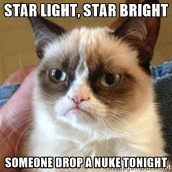 Grumpy Cat  - star light, star bright someone drop a nuke tonight