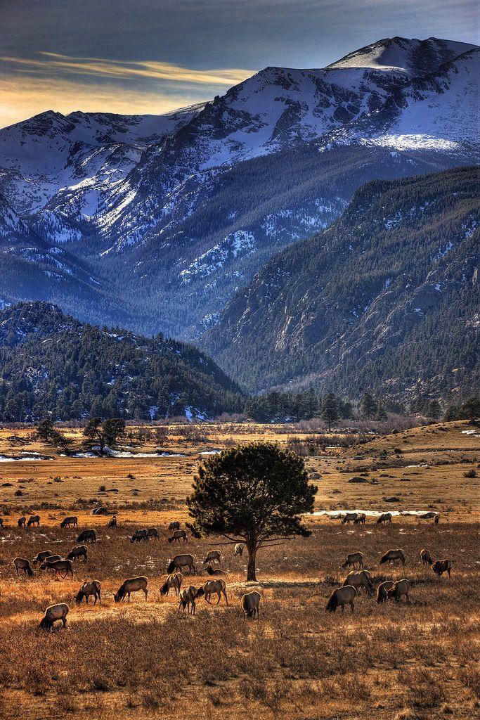 Rocky Mountain National Park .. Colorado