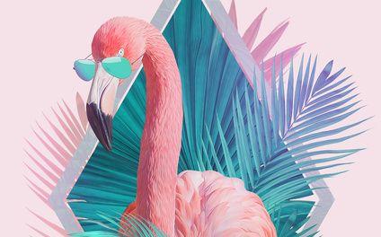 Art Print - Тропические листья - Роберт Фаркаш