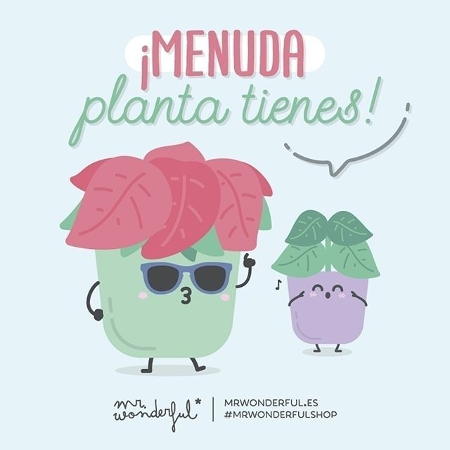 ¡Fiiiiiit- fiiiiiu! What a fine specimen you are! Wolf whistle! Wow, you really are good looking! #mrwonderfulshop #quotes #plant