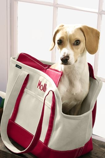 for the dog who has it all - a monogrammed dog carrier