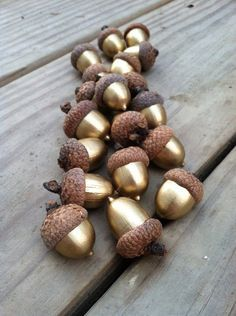 DIY Fall Decor: Gold acorns. Clean and oven dry for several hours to ensure they are pest free. Acorns naturally fall out of the caps when ripe, so after they are oven dried and painted, use a hot glue gun to attach all the acorns to the caps. Finish them by adding a layer of clear shellac giving them a shiny look.