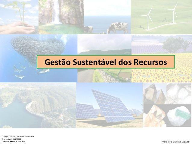 Subdomínio: Gestão Sustentável  dos Recursos  Colégio Conciliar de Maria Imaculada  Ano Letivo 2013/2014  Ciências Naturais – ...