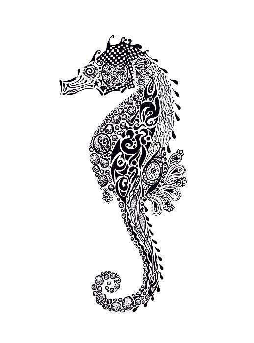 seahorse drawing by jakki oakes un modle pour broderie perle
