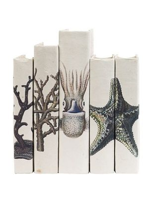 By Its Cover Hand-Rebound Set of 5 Coastal Decorative Books, III