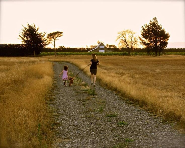 Highly Commended. A summer evening walk with my daughter Alice and our puppy monsieur cocoa pic taken near the palliser vineyard walk by Sarah