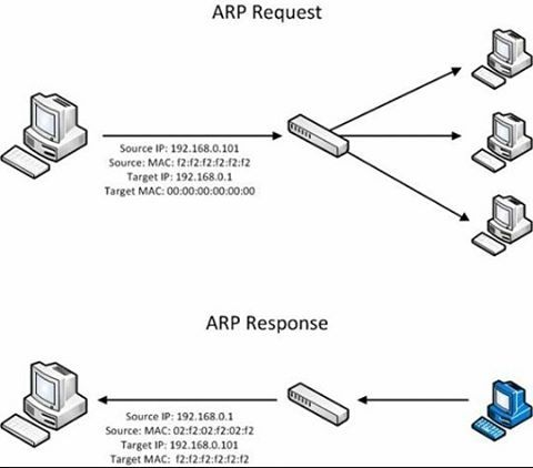 ARP (Address Resolution Protocol) is a Protocol a part of TCP/IP. (Transmission Control Protocol/Internet Protocol) Every computer has a physical MAC address on them ARP's job is to turn your physical MAC address into an IP address so you can communicate with websites and applications. ARP spoofing is when an attacker sends a fake ARP request to a computer on the local network and making them think that you are ARP. Generally an attacker is trying to get their MAC address to be associated…