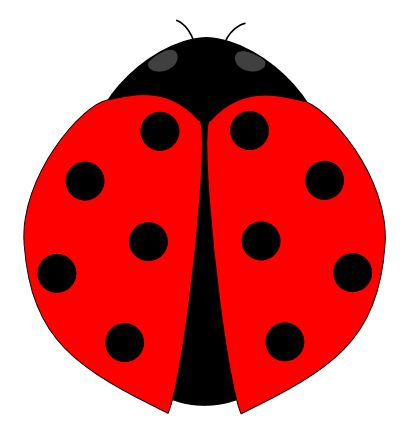 kids ladybug