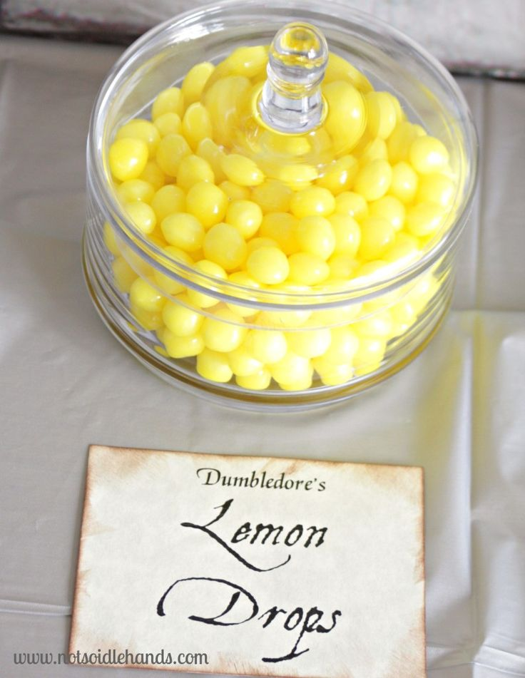 Harry Potter Birthday Party Food and Snacks ~ Part 3 @NotSoIdleHands.com