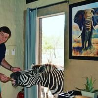 Honey Badger Safari House · Property photos