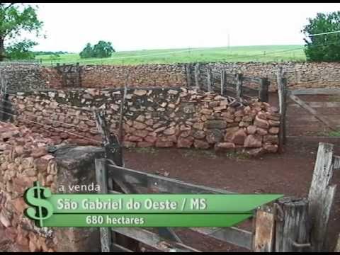 FAZENDA À VENDA EM SÃO GABRIEL DO OESTE / MS COM 680 HECTARES