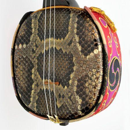 皮 錦蛇 ニシキヘビ #snake skin