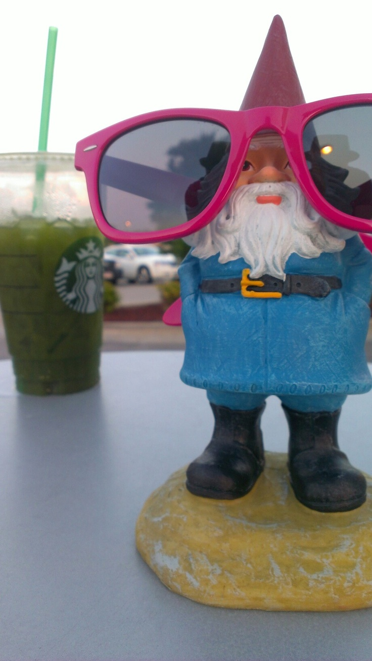 Gnome In Garden: 1000+ Images About Traveling Gnome On Pinterest