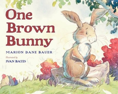 """One Brown Bunny"" by Marion Dane BauerBring Counting, Counting Book, Danes Bauer, Brown Bunnies, Bates Bring, Abc Book, Duo Marion, Marion Danes, 1000 Book"