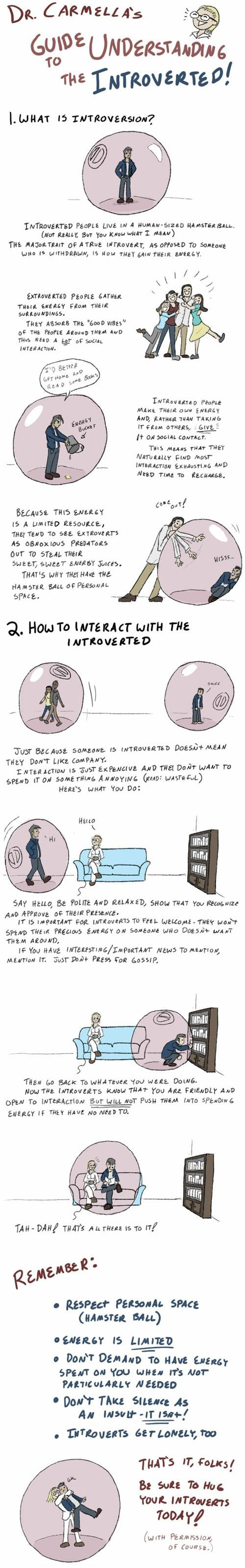 a guide to understanding introverts.