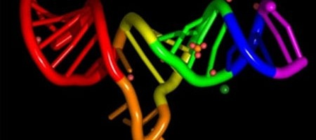 Genetic Testing For Alzheimer's and Dementia