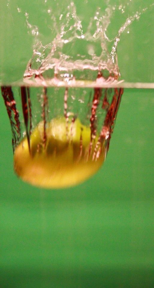 Swimming lemon