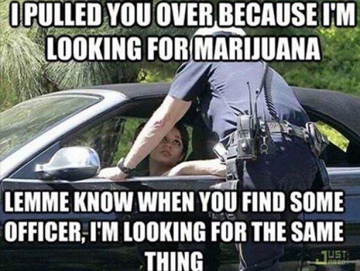 Looking for Marijuana meme - http://jokideo.com/looking-for-marijuana-meme/