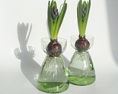 Spring is coming... Set of two Dutch glass bulb hyacinth vases vintage retro flower green flowerbulb