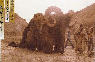 Jedi Sith, Star Wars Pictures, Clone Wars, Elephant, Graphic Design, Stars, Animals, Image, Tv