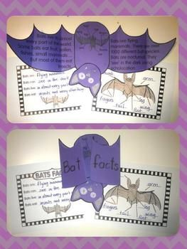 Bat Facts Fold and Learn.....fun stuff to learn about bats and other nocturnal animals to lead up to Halloween