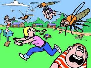 Средства от комаров для дачи и дома - СОСЕД-ДОМОСЕД