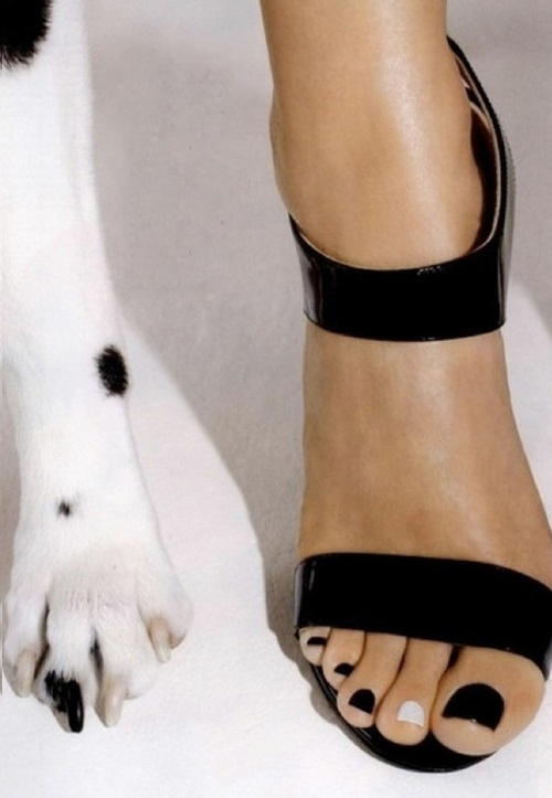 From Cosmo, apparently.  I ought to do this with Ada-bug: she has one black toenail, too.  :)