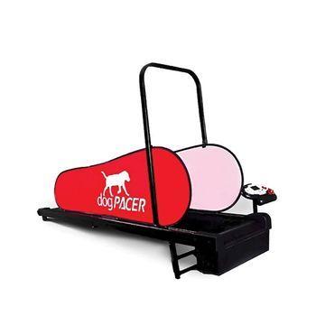DogPacer Mini Treadmill