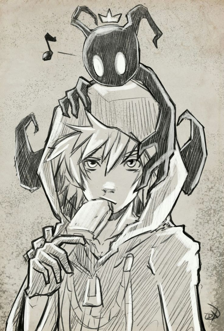 Heartless sora and roxas