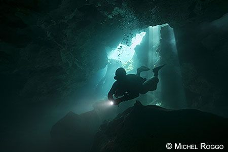 The Freshwater Project - Cenotes
