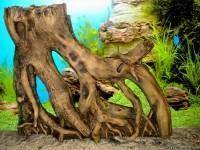 520. Подбираем корягу для аквариума - Украшения для аквариума <!--if(Про аквариум, террариум)-->- Про аквариум, террариум<!--endif--> - Каталог статей об аквариуме - РосАквариум