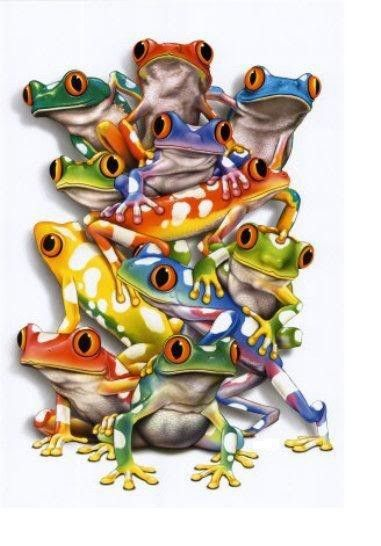 Colorful Frogs :).  I have this poster.  It is awesome!!!!!!!!!!!!