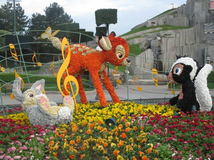 Image result for dlp swing into spring topiaries