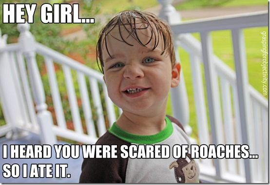 Kid eats roach for girl. Just kidding, but I love this post. #bugs #HUMOR