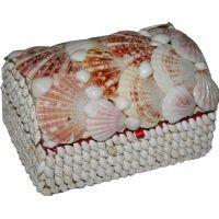 Deniz kabuklarından oluşan çok şık hediye kutular için www.hediyekutucu.com u ziyaret ediniz.