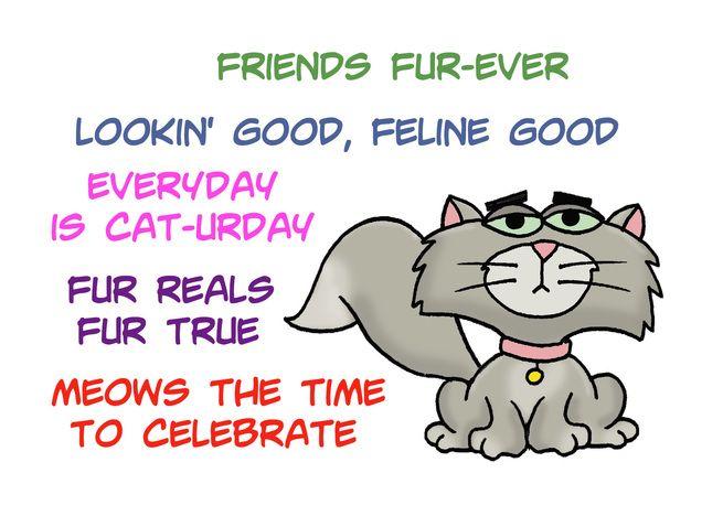 Hi Hello Card With Cartoon Cat And Cat Puns Card In 2020 Cat Puns Cartoon Cat International Cat Day
