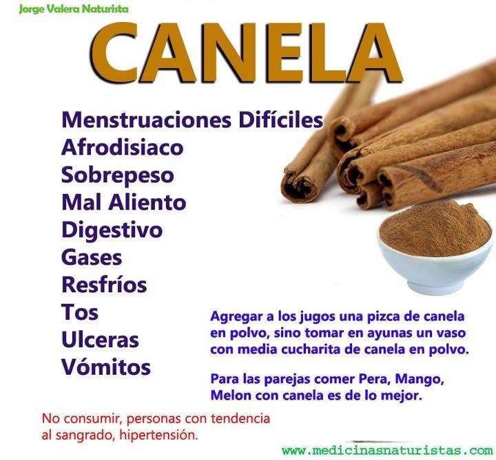 Beneficios y propiedades de la Canela.