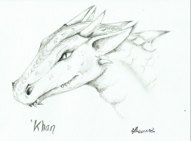 A wee pencil sketch I did of a dragon I often see. © Heather Lennox 2016